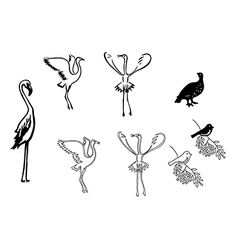 Silhouettes birds - set vector