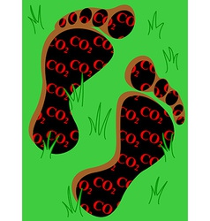 Carbon footprint on grass vector image