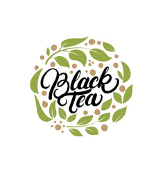 black tea hand written lettering logo label badge vector image