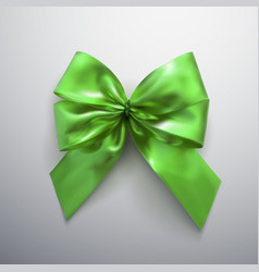 Green bow and ribbons vector
