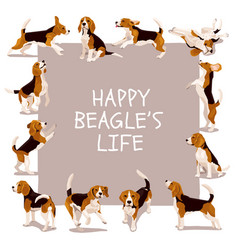 happy beagle life card with dogs vector image