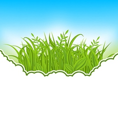 Nature card with green grass vector image