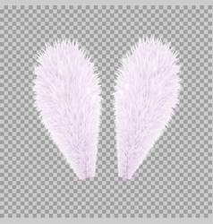 Realistic rabbit bunny easter ears vector