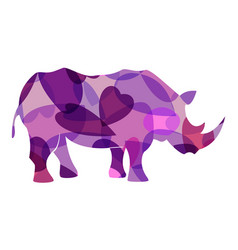 rhinoceros colourful vector image