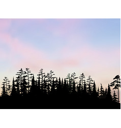 spruce and pine forest on hill under the vector image