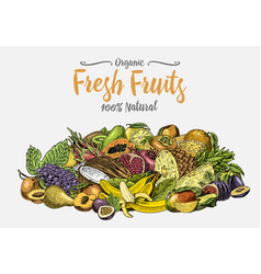 Vintage hand drawn fresh fruits background vector