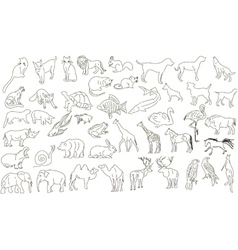 Rough animals vector image