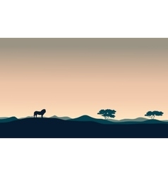 Beautiful landscape lion silhouettes vector image vector image
