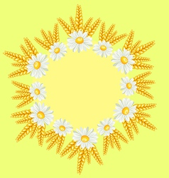 chamomile border vector image