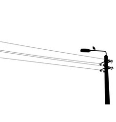 crow on the street lamp vector image