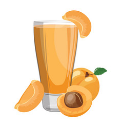 a glass fresh apricot juice vitamin refreshing vector image