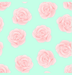 pink rose on green mint background vector image