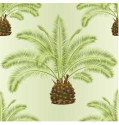 seamless texture tropical plant palmae date palm vector image