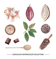 Set isolated watercolor chocolate on white vector