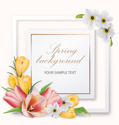 Spring background with tulips crocuses anemones vector