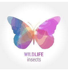 Wildlife banner - insects butterfly vector