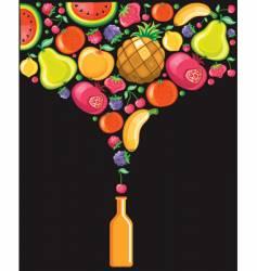delicious fruits vector image vector image