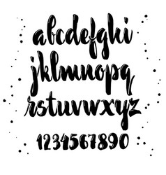 alphabet calligraphic font unique custom vector image