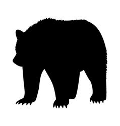 Animal bear abstract vector