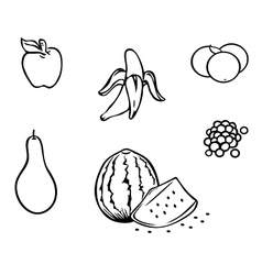 fruits collection outline vector image