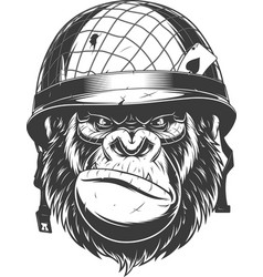 Gorilla in the military helmet vector