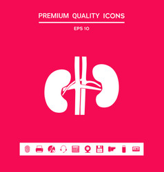 human organs kidney icon graphic elements for vector image