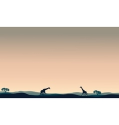 Landscape giraffe at afternoon vector
