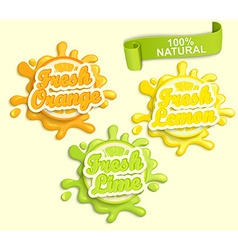 Set of Lemon orange lime juece labels splash vector