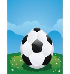 Soccer Ball Egg vector image