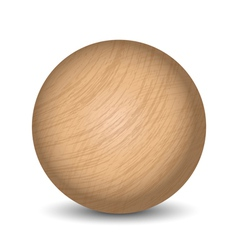 wooden ball vector image