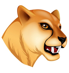 A head of a panther vector image vector image