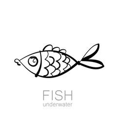fish underwater vector image vector image