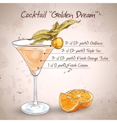 Alcoholic Cocktail Golden dream vector image