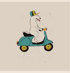 bull terrier dog riding motorbike vector image