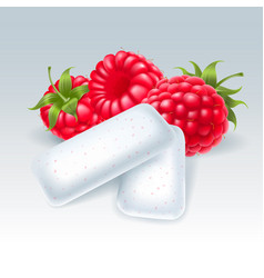 Chewing gum with raspberry flavor vector