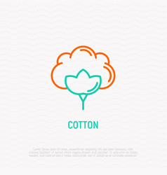 Flower cotton thin line icon vector