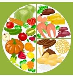 Healthy eating food plate Nutrition balance vector