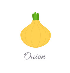 onion icon with title vector image