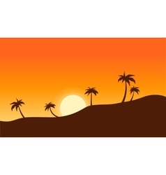 Silhouette of palm lined landscape sunset vector image vector image