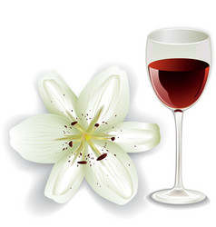 white lily and glass of red wine vector image