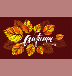 fall background design with colorful autumn leaves vector image
