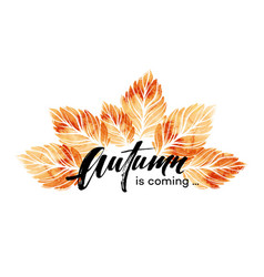 watercolor painted autumn leaves banner fall vector image