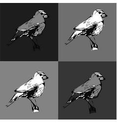 Bird1 vector
