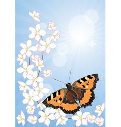 cherry blossoms and butterflies vector image