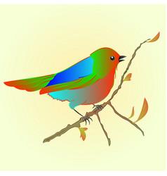 Little bird on branch spring background vector