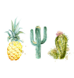 pineapple and cactus set watercolor exotic vector image