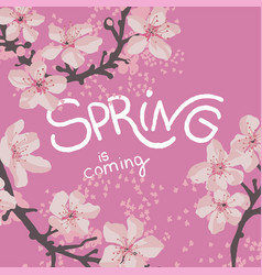 Spring is coming cherry tree blossom on banner vector