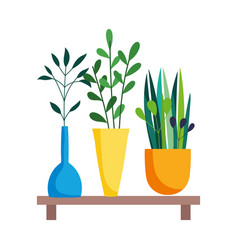 Wooden shelf with decorative potted plants vector
