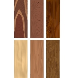 Photorealistic types of wood vector image vector image