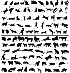 100 cats vector image